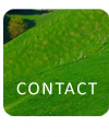 Find out how to contact us